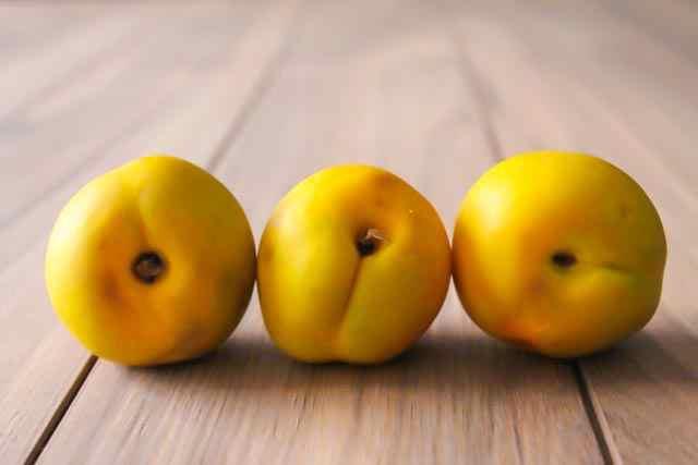 three mango nectarines