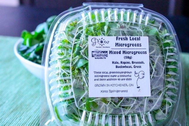 mixed microgreen sprouts