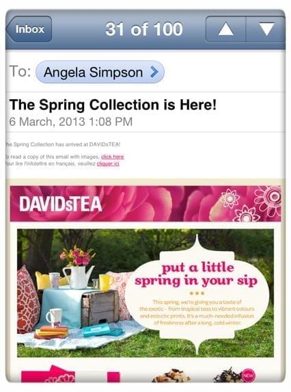 David's Tea Spring Collection