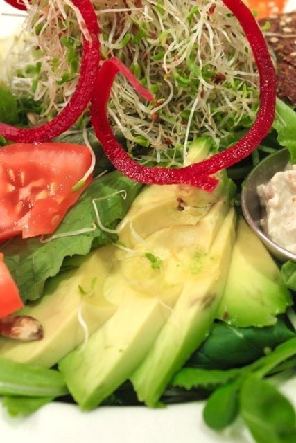 crudessence salad