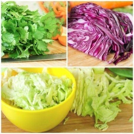cabbage and cilantro