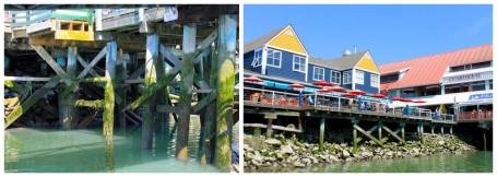 fisherman's wharf 2