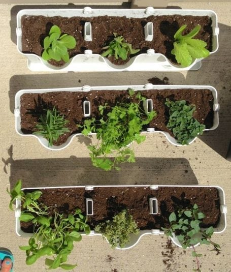 minigarden vertical planter