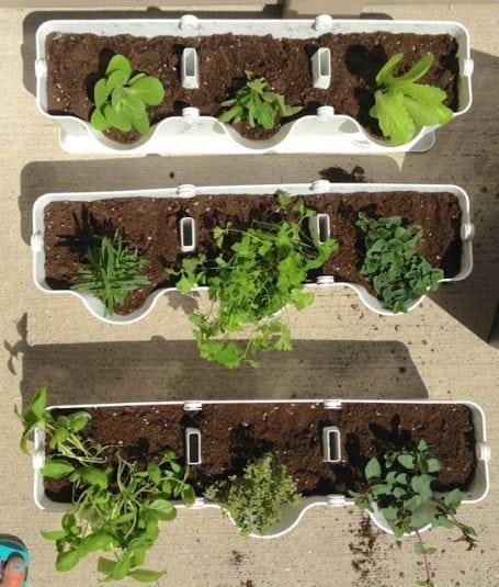 minigarden vertical planter