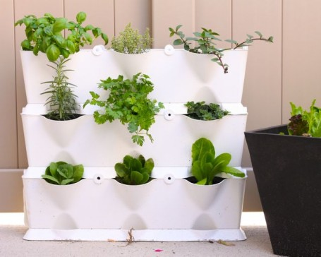 minigarden vertical planter filled with herbs and greens