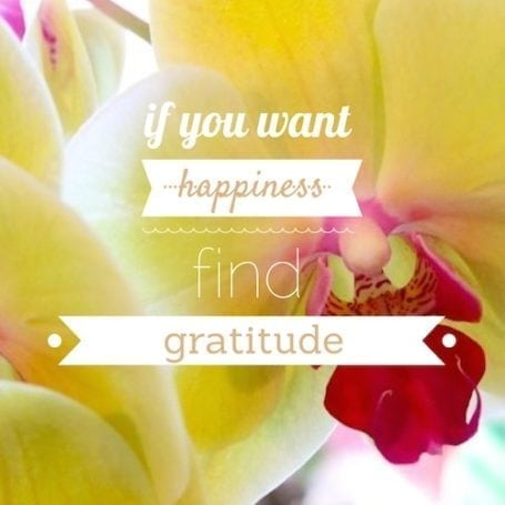 if you want happiness find gratitude