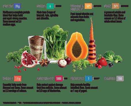 Vega One Whole Food Ingredients