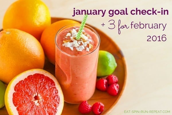 January Goal Check-In and 3 for February 2016 - Eat Spin Run Repeat.com