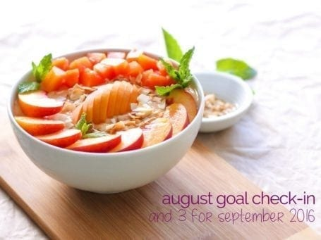 August Goal Check-In and 3 for September 2016 - Eat Spin Run Repeat