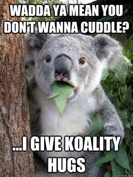 koality hugs