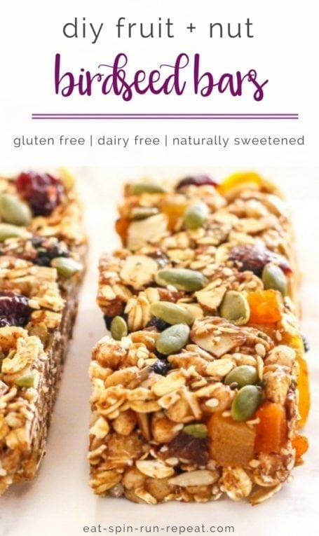 DIY Fruit and Nut 'Birdseed' Bars | No-bake, gluten free, dairy free, and a totally healthy travel snack to keep you eating clean on the go! | Eat Spin Run Repeat | #travel #eatclean #vegan #glutenfree