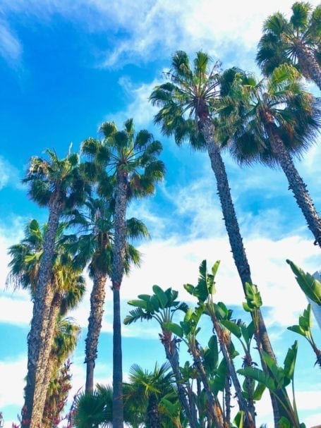 The one where I explain why I moved to California - Eat Spin Run Repeat